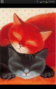 Kitty love♥