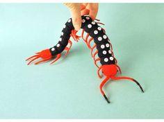 Spotted Centipede(ハンテンムカデ)