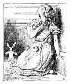 """""""...before her was another long passage, and the White Rabbit was still in sight, hurrying down it."""""""