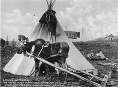 A Moose and Teepee  Inclusive Date(s): 1902