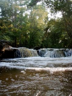 Kisatchie Falls! Best and worst summer job I had...wish I could go back