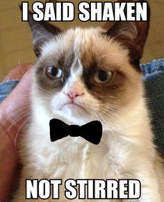 Grumpy Cat   #grumpycat