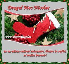 Christmas Decorations, Christmas Ornaments, Holiday Decor, Vines, Ely, Advice, Home Decor, Merry Christmas, Decoration Home