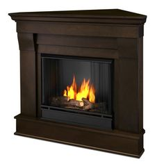 @Overstock.com - Real Flame Chateau Dark Walnut Gel Indoor Corner Fireplace - The Chateau Corner indoor fireplace features the clean lines and classic styling familiar to stone mantels, realized in wood. It includes a mantel, cast-concrete log, and screen kit, and emits up to 9,000 BTU's of heat per hour.  http://www.overstock.com/Home-Garden/Real-Flame-Chateau-Dark-Walnut-Gel-Indoor-Corner-Fireplace/7348452/product.html?CID=214117 $394.99