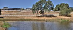 10 acres w/ swimming ponds, pastures & gorgeous views