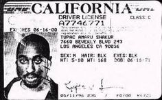 21 years after the infamous Tupac murder, Suge Knight claims Tupac is still alive. Who killed Tupac? Diddy, gang members, and Tupac's aunt Assata Shakur. Tupac Shakur, Who Killed Tupac, Tupac Murder, Hiphop, 2pac Makaveli, Assata Shakur, Tupac Pictures, Tatoo, Musica