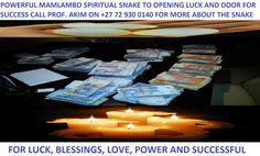 Snake to bring luck and be rich (mamlambo) - Queenstown - free classifieds in South Africa Winning Lotto, Money Spells, Spell Caster, Free Classified Ads, Rich Life, How To Become Rich, Free Ads, Business Help, Happy Marriage