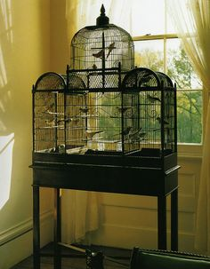 Bird Cage Inspiration, The bird cage is equally a property for the birds and a decorative tool. You are able to choose what you may want on the list of bird cage designs and get a lot more specific images. Bird Cage Design, Diy Bird Cage, Finch Cage, Antique Bird Cages, The Caged Bird Sings, Bird Aviary, Ideas Hogar, Gothic House, Vintage Birds