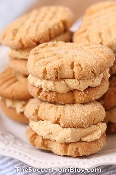 Copycat Nutter Butter Cookies These Homemade Nutter Butter Cookies are super decadent and surprisingly easy to make! A peanut butter lovers dream come true! Soft Peanut Butter Cookies, Easy Chocolate Chip Cookies, Chocolate Cookie Recipes, Peanut Butter Recipes, Easy Cookie Recipes, Chocolate Chips, Cream Cookies, Peanut Cookies, White Chocolate