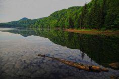 Stefan Bela din Baia Mare Mountains, Travel, Viajes, Destinations, Traveling, Trips, Bergen