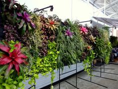 Un jardin vertical par Urban Zeal