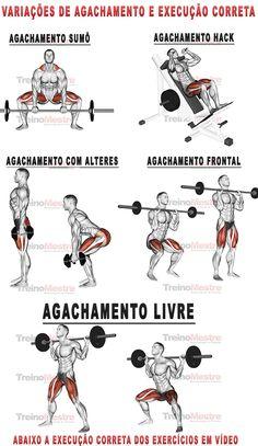 Variações do agachamento e execução correta #agachamento #squat