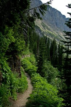 Would love to hike a mountain pass trail again when I'm healed!