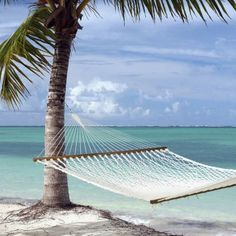 I could spend some quality time here....