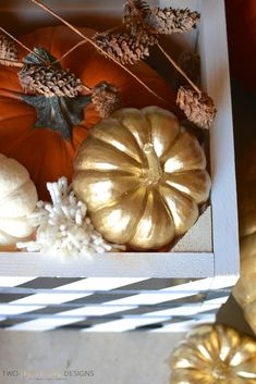 Gold Pumpkins in Painted Crate