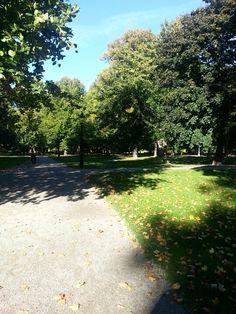 En dag i parken 1