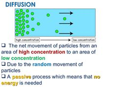 The net movement of particles from an area of  high concentration  to an area of  low concentration Due to the  random  movement of particles A  passive  proce…