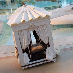 dog bed furniture | Dog Furniture | Royal Cabana Dog Bed | PETS