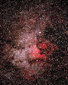 NGC7000, a very large diffuse nebula in Cygnus is called The North American Nebula because of its shape, especialy the area that appears like the Gulf of Mexico. Its a bright emission nebula at about 3 degrees east of alpha Cygni.