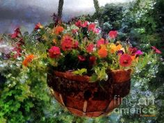 """""""Summer Picture Window"""" ~ © 2015 RC deWinter ~ All Rights Reserved"""