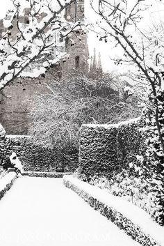 [CasaGiardino] ♡ Abbey House Garden in Winter Winter Magic, Winter Snow, Winter Time, Winter Season, Winter Christmas, Winter Scenery, Snow Scenes, Winter Beauty, Winter Pictures