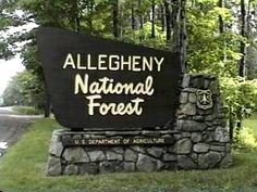 Allegheny National Forest Campgrounds. Love this place when we go back east. It's the only place I'll camp at!