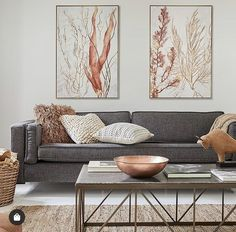 Charcoal Sofa Living Room, Living Room Grey, Living Room Sofa, Home Living Room, Charcoal Couch, Charcoal Gray, Living Room Color Schemes, Living Room Colors, Living Room Designs