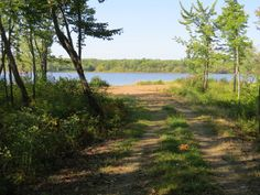 400 FEET OF WATERFRONTAGE ON GRAND LAKE AT CUMBERLAND BAY, NB $129,900 9214 NB-10, Cumberland Bay, NB E4A 3E8 Contact: Bob McLean 506-260-2030 or rmclean@nb.aibn.com