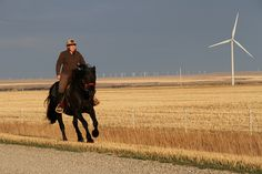 One of my favourite images of Heidi Eijgel, at the Summerview Wind Farm north of Pincher Creek, Alberta.  by Green Energy Futures, via Flickr