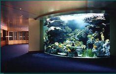 Delicieux Gigantic Aquarium In Waiting Room.