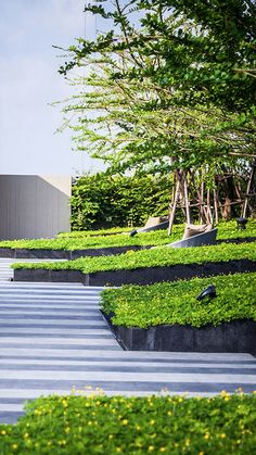 Garden Design Ideas : // Sari by Sansiri, Landscape by Shma Company Limited. Photos courtesy of Shma… Landscape Concept, Urban Landscape, Landscape Architecture, Landscape Design, Modern Landscaping, Backyard Landscaping, Landscaping Ideas, Backyard Ideas, Paving Ideas