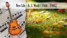 Partitura y Tablatura New Life - A. J. Weidt  Guitarra Acústica