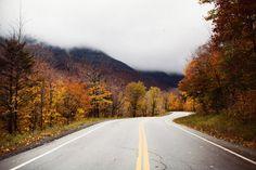 The quiet winding road