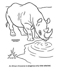 African Animals Coloring Pages | Wild Animal Coloring Pages | African Rhinoceros Coloring Page and Kids ...