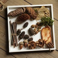 Garden Decoration Resin Miniature Garden Crafts Natural Micro Landscape Twigs Acorn Pictures Props Diy Natural Material Package(China (Mainland))