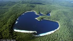Love island: heart-shaped Lake McKenzie, Fraser Island, east coast of Australia Coast Australia, Australia Travel, Queensland Australia, Visit Australia, Heart In Nature, Fraser Island, Earth Surface, In Natura, World Geography