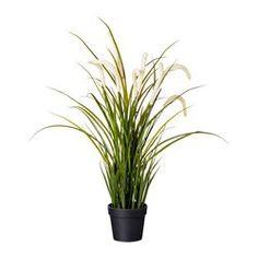 IKEA - FEJKA, Plante artificielle en pot, Plante artificielle qui apporte une touche de fraîcheur année après année.Idéal si vous n'avez pas la possibilité d'avoir une plante en pot mais que vous souhaitez profiter des beautés de la nature.
