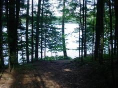 MLS # 144687 - NEW Listing! Hard to find and affordable double lot with 200 of water frontage on Rhinelander Chain of Lakes. This site features a cleared and level building site wooded shoreline walking path to the water and great overlooking views of Bass Lake. This property is located on a quiet town road in a residential neighborhood with utilities available at the road. If youre dreaming about building your waterfront home or cottage then look no further.