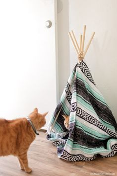 DIY Cat Teepee (How to Build a Tipi). Brought to you by @Target #1StopPetShop #ad // localadventurer.com
