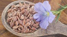 obrázek z archivu ireceptar.cz Omega 3 Oil, Seeds, Texture, Vegetables, Flowers, Crafts, Image, Fitness, Crohn's Disease