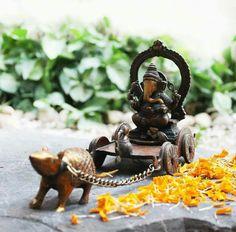 Lord Ganesh ganapathy vinayagar sahasranamam vishnu latest new good morning வினாயகர் கனபதி இனிய காலை வணக்கம் image Tik Tik ithayathudippu Sai Baba Hd Wallpaper, Ganesh Wallpaper, Ganesha Pictures, Ganesh Images, Ganesh Bhagwan, Ganesh Photo, Baby Ganesha, Shiva Parvati Images, Ganesh Lord