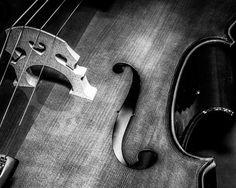 Fine Art Photo Cello Cello Foto Still Life Foto von EncorePhoto