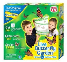 Insect Lore Live Butterfly Garden Habitat Insectlore Science Kits Kids Gift NEW #InsectLore