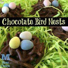 Chocolate Bird Nests for Spring and Easter - only 3 ingredients!!