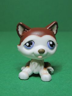 #427 chien dog brown & white Husky Purple eyes LPS Littlest Pet Shop Figurine