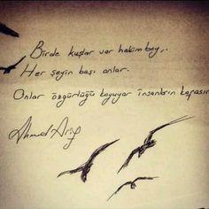 Birde kuşlar var hakim bey herşeyin başı onlar onlar özgürlüğü koyuyor insanların kafasına ahmed arif