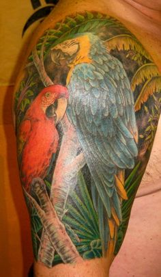 Two parrots on client's upper right arm (covering old tattoo)