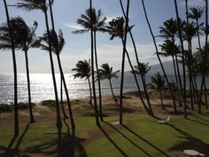 View from our hotel room. Maui
