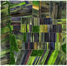 Watercolor Aerial Views of Black Dirt region Archival by Vikki Chu