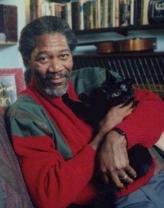 Morgan Freeman and a cat!!!!!!!